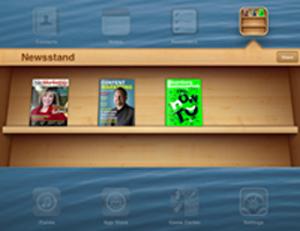 iPad_Newsstand_300